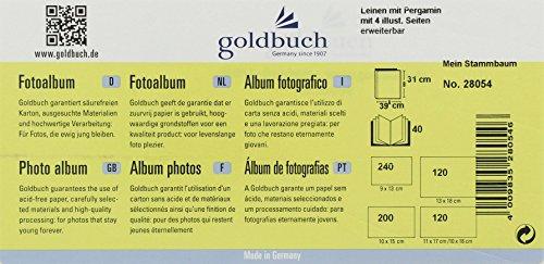 Niedlich Mein Stammbaum Färbung Seite Bilder - Dokumentationsvorlage ...