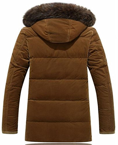 UK Down Camel Hot Hooded Coat Outwear Jacket Thicken Cotton Faux Brd Men's Fur Rqr7xqO5z