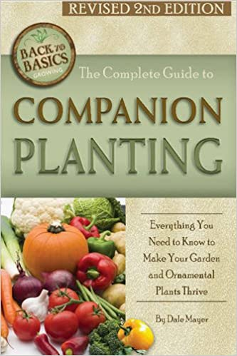The Complete Guide To Companion Planting Everything You Need To