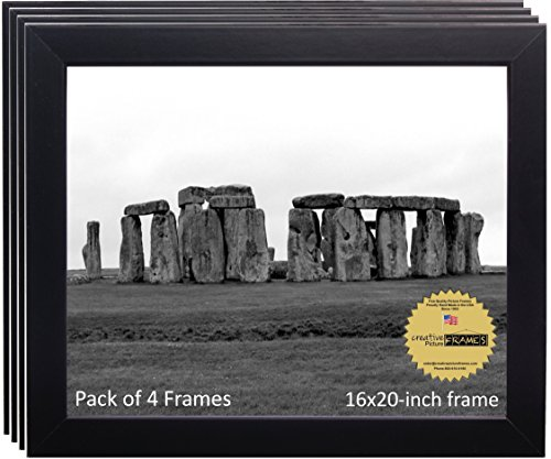 CreativePF [4pk-16x20bk] Black 16 x 20 Picture Frame Holds 16 by 20-inch Assorted Media (4-Pack) by Creative Picture Frames