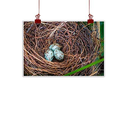(duommhome Modern Frameless Painting Bird nest and Eggs on TRE Natural Art 32