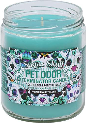 Pet Odor Exterminator Candle, Sugar Skull,13 -
