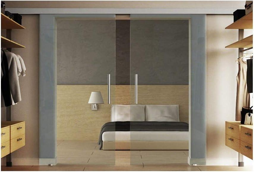 Puertas correderas de cristal con dos discos de 155 x 205 cm en vidrio templado-vidrio transparente Levidor EasySlide-sistema completo. Ejecución de rieles y barras de asas, puerta corredera de cristal de interior