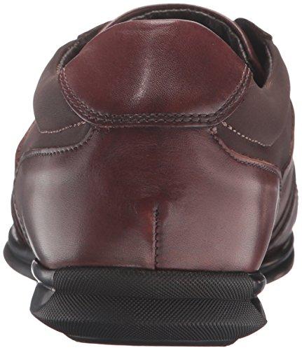Baca Dark Sneaker Bacco Tan Fashion Bucci Men's TqwqEzA