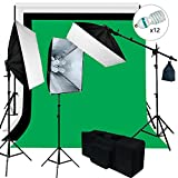 Julius Studio 6 X 9 ft. Background Support and Softbox 4 Bulbs Continuous Lighting Kit for Photo Studio, Viedo Shoot Photography, JSAG259