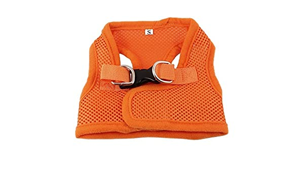 Amazon.com : Filhote de gato DealMux Meshy Estilo Dog Pet libertação fivela Harness, X-Small, Orange : Pet Supplies