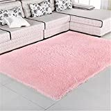 80X120cm Silky Carpet Mats Sofa Bedroom Living Room Anti-Slip Floor Carpets pink 80x120cm