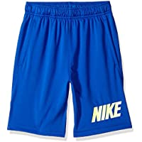 NIKE Boys' Dry Legacy Training Shorts