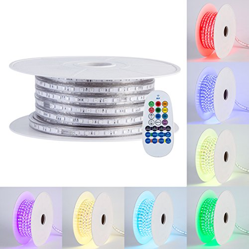 Led Rope Light Fuse in Florida - 6