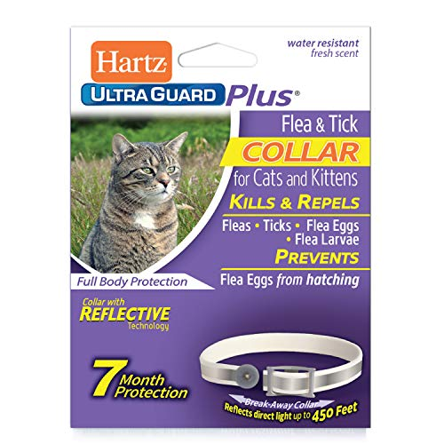 HARTZ UltraGuard Plus 7 Month Protection Reflective Flea & Tick Collar for Cats and Kittens (Flea Kittens Collars)