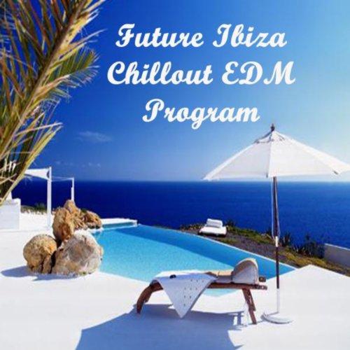 Future Ibiza Chillout EDM Program (The Best Electro House, Electronic Dance, EDM, Techno, House & Progressive Trance) (Best Program For Edm)