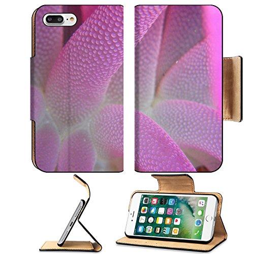 MSD Premium Apple iPhone 7 Plus Flip Pu Leather Wallet Case Knysna sea anemone IMAGE 23826645 (Rug Anemone)