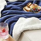 BEDSURE Sherpa Fleece Blanket Throw Size Bluish