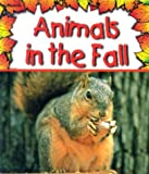 Animals in the Fall, Gail Saunders-Smith, 1560655887