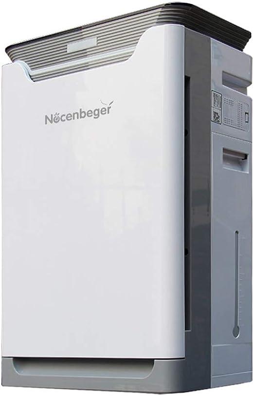 BCXGS Generador de Iones Negativos con Filtro HEPA, Purificador ...