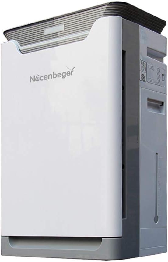 BCXGS Generador de Iones Negativos con Filtro HEPA, Purificador de ...