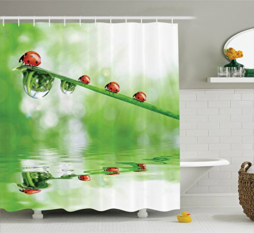 Ambesonne Ladybugs Decorations Shower Curtain Set, Ladybugs On A Stem Over The Water Striped Animals Fresh Environmental Life Image, Bathroom Accessories, 69W X 70L Inches, Red - Shower Curtain Ladybug