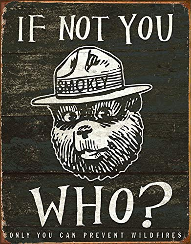 (Desperate Enterprises Smokey Bear - If Not You Who? Tin Sign, 12.5