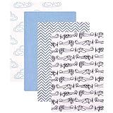 Hudson Baby Unisex Baby Cotton Flannel Receiving