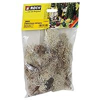 NOCH - 08600 - Sacchetto Muschio E Lichene Grigio Pietra 35 Gr