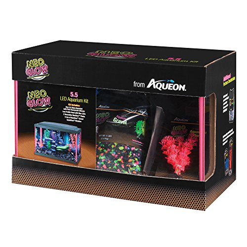 neon fish - 7