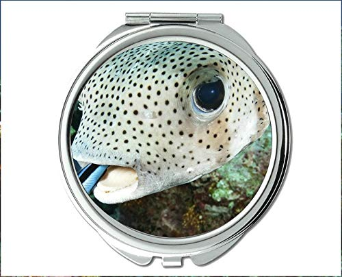 Mirror,Compact Mirror,fish eyes theme of Pocket Mirror,portable mirror 1 X 2X -