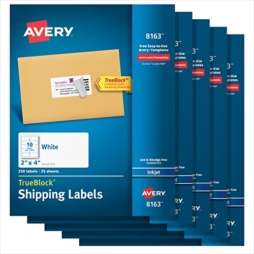 Avery Shipping Address Labels, Inkjet Printers, 1,250 Labels, 2x4 Labels, Permanent Adhesive, TrueBlock (5-pack 8163)