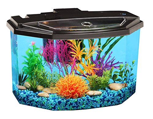 Koller Products AquaView 3-Gallon Fish Tank with LED Lighting and Power ()