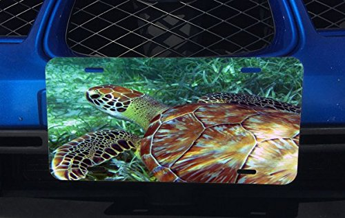 Sea Turtle Swimming in the Ocean Aluminum License Plate for