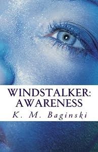 Windstalker: Awareness by K. M. Baginski (2015-02-18)