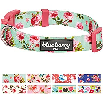 "Blueberry Pet 8 Patterns Spring Scent Inspired Floral Rose Print Turquoise Dog Collar, Small, Neck 12""-16"", Adjustable Collars for Puppies & Small Dogs"