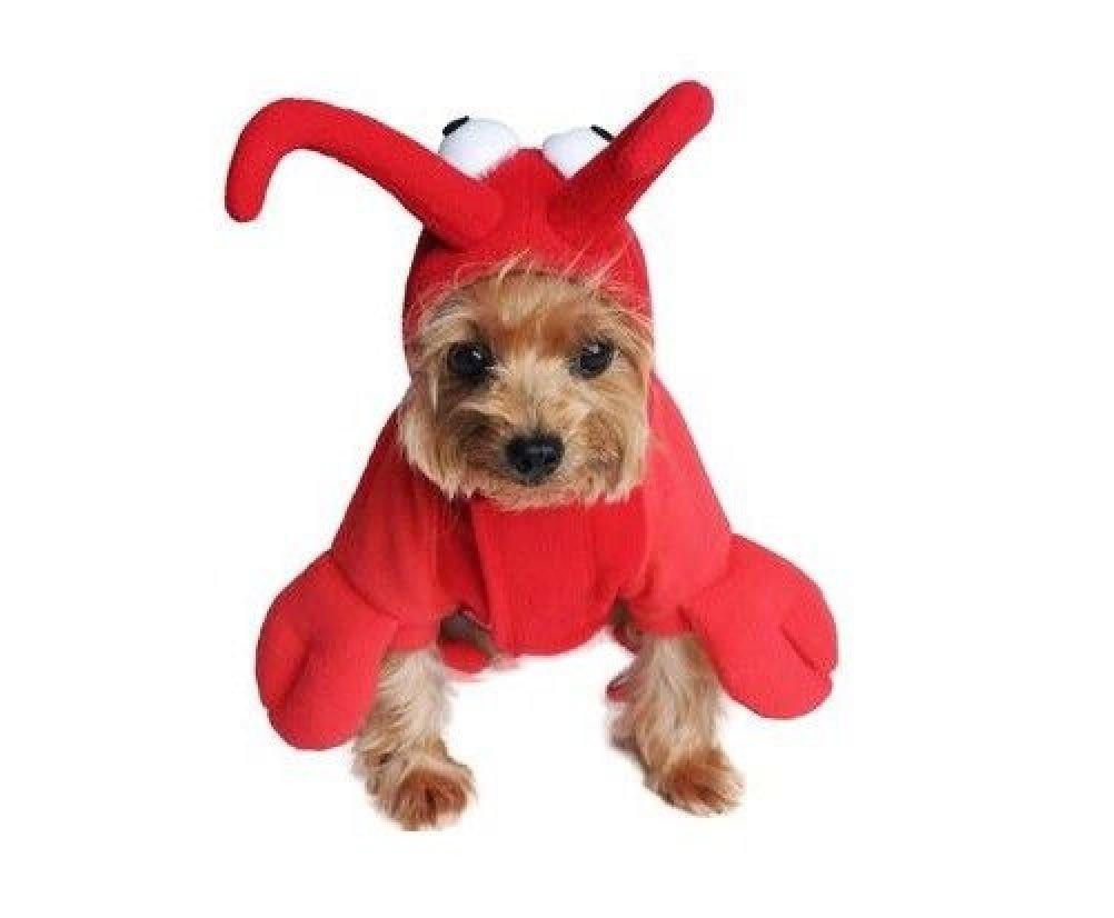 Dog Costume Halloween Red Lobster Outfit Detailed Bodysuit With Claws Headpeice