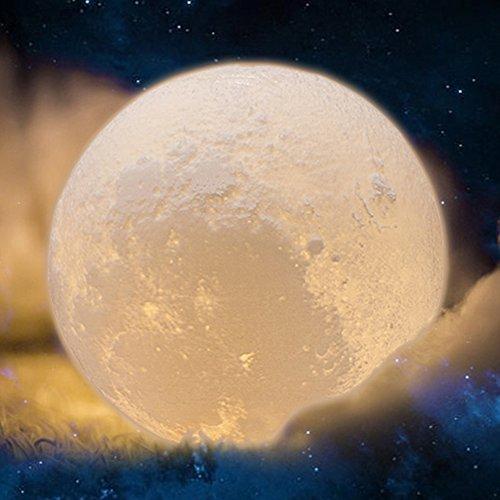 Moonlight Globe Outdoor Lighting