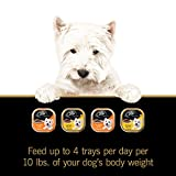 CESAR-Classics-Meat-Flavored-Adult-Wet-Dog-Food-Trays