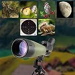 Lunette de visée Gosky Update 20-60x80 avec trépied, Sac de Transport et Adaptateur de téléphone - télescope coudé BAK4… 12