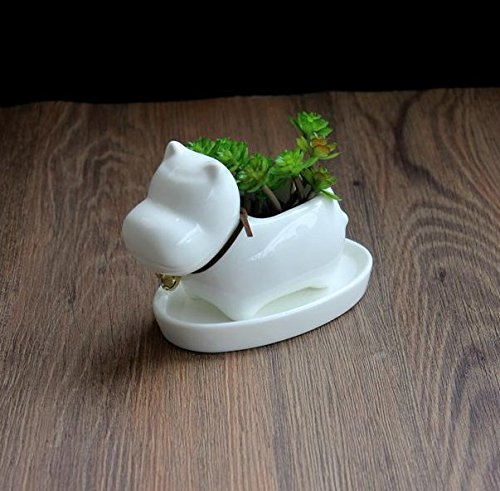 Bulldog Dog White Ceramic Plant Flower Pots Home Office Decor Planter,Milky Cream White with Tray.(Dog (Bulldogs White Ceramic)
