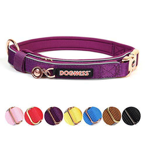 Goetland Nylon Metal Classic Buckle Dog Collar Quick Release No Choke Adjustable Durable Training XS/S Purple