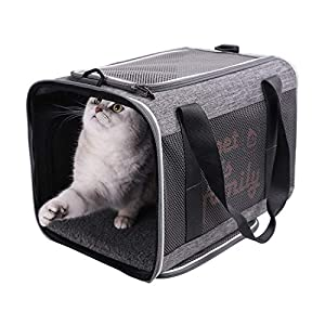 petisfam Large Cat Carrier Designed Especially for Sensitive Cats