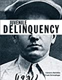 Juvenile Delinquency (The Justice Series) 1st Edition