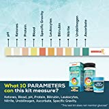 Generical X: 10 Parameter Urine Test Kit