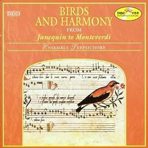 Birds & Harmony