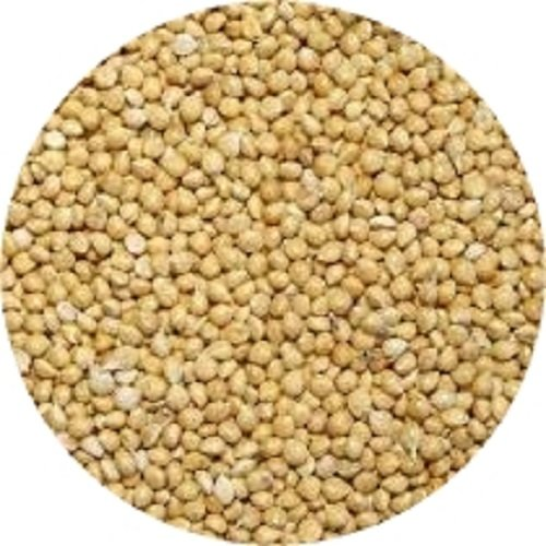 Shafer-Seed-84075-White-Proso-Millet-Wild-Bird-Food-50-Pound