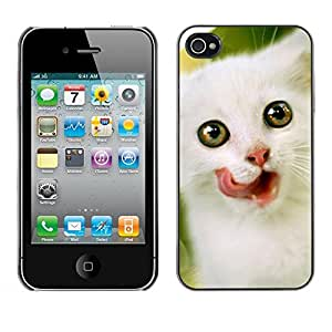Be Good Phone Accessory // Dura Cáscara cubierta Protectora Caso Carcasa Funda de Protección para Apple Iphone 4 / 4S // Kitten Cat American Curl Devon Rex