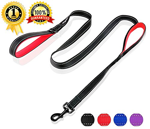 Nylon Reflective Leash (Strong Double Handle Dog Leash for Big Dogs 6ft Long Heavy Duty Dog Leash Chew Proof Nylon Webbing and Reflective Stitching)