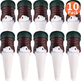 10 Pack Self Watering Stakes Automatic Watering System Vacation Plantes Waterer Plant Self Drip Irrigation Slow Release for Indoor or Outdoor Houseplants (10)
