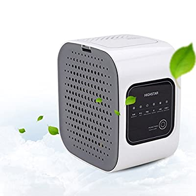 Mini Portable Air Purifier Small Space Odor Reduction Air Cleaner Chic Simple Design Good Quality for Car and Home