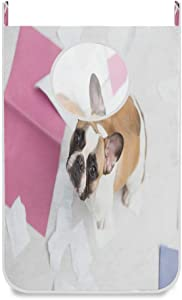 Hanging Laundry Hamper Bag Pet French Bulldog Puppy Door/Wall/Closet Hanging Large Laundry Bag Basket for Dirty Clothes Storage Organizer Waterproof,with 2 Hooks,Space Saving for Travel,Small Room