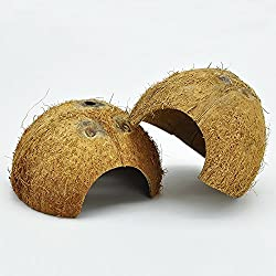 Niteangel 2 Pack Natural Coconut Reptile Hideouts, Lizard, Spider and Aquarium Fish Hide Cave (Natural Surface)