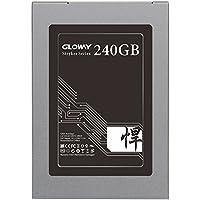 Gloway 240GB SSD Drive SATA III Internal Solid State Drive 3 Years Warranty MLC with Cache