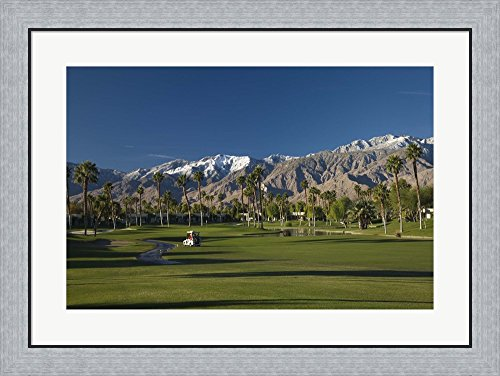 Palm trees in a golf course, Desert Princess Country Club, Palm Springs, Riverside County, California, USA by Panoramic Images Framed Art Print Wall Picture, Flat Silver Frame, 32 x 24 inches (Desert Princess Country Club)